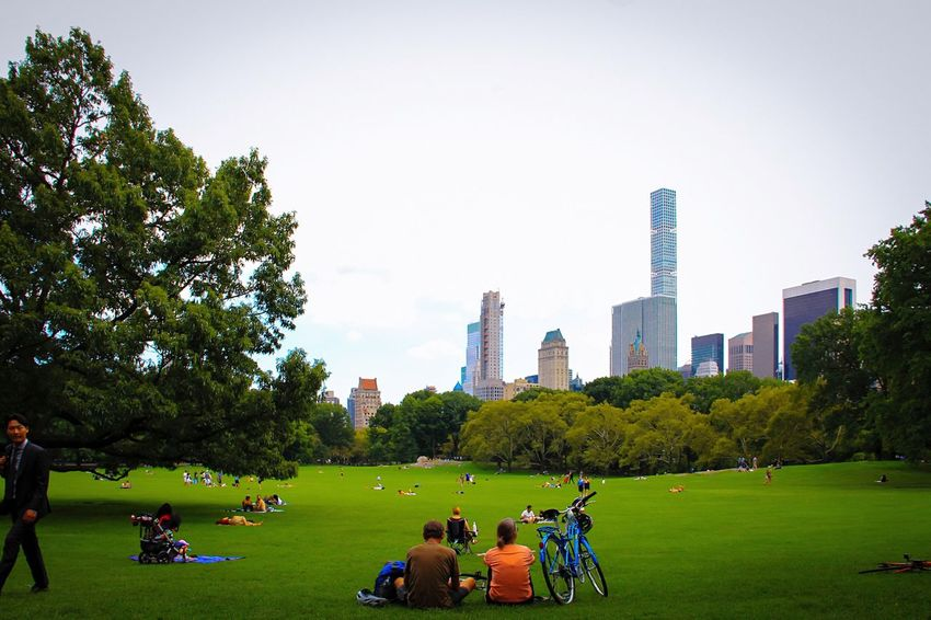 Central Park - NYC Sheepmeadow