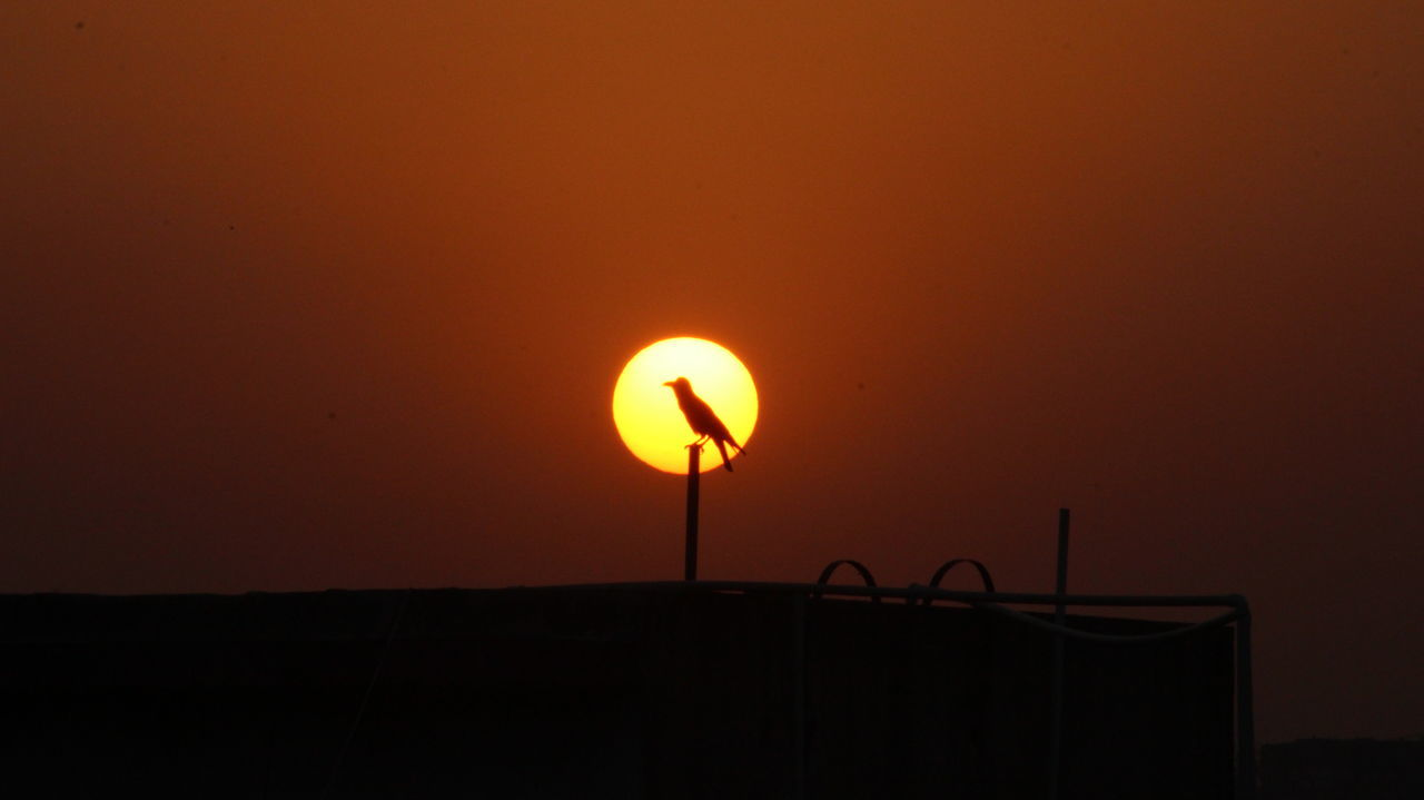 sunset, orange color, silhouette, sun, nature, beauty in nature, clear sky, no people, scenics, outdoors, illuminated, sky, day