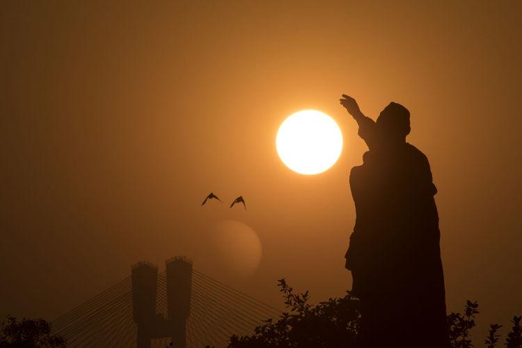 Silhouette of birds against sunset sky