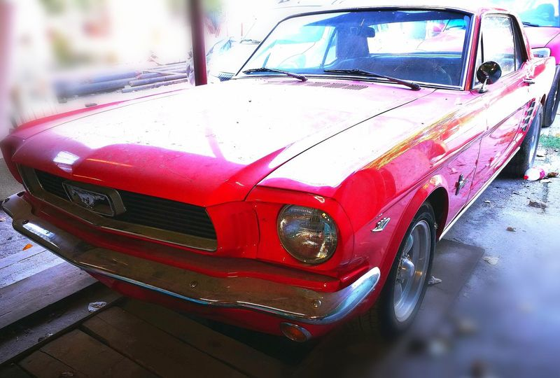 Car Classic FordMustang289 Forgotten Forgotten Memories Passionforcars Postprocessing Passionforphotography