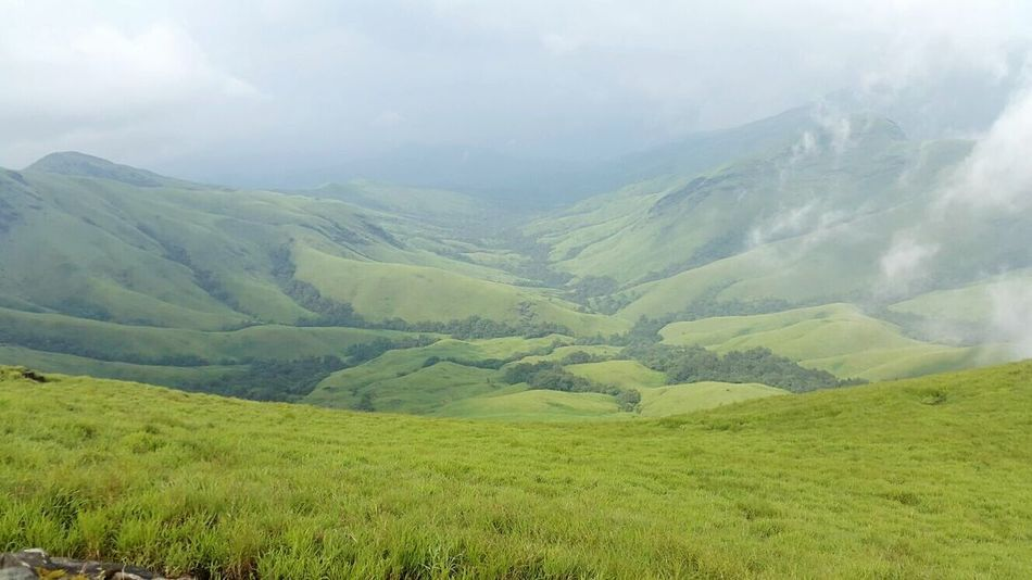 Shola of Kudremukh . Beauty Of Nature . Green Grass Blue Sky Western Ghats India My Favorite Photo Kudremukh Peak