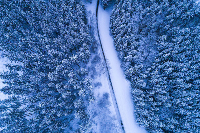 Aerial view of road by snow covered land and trees during winter