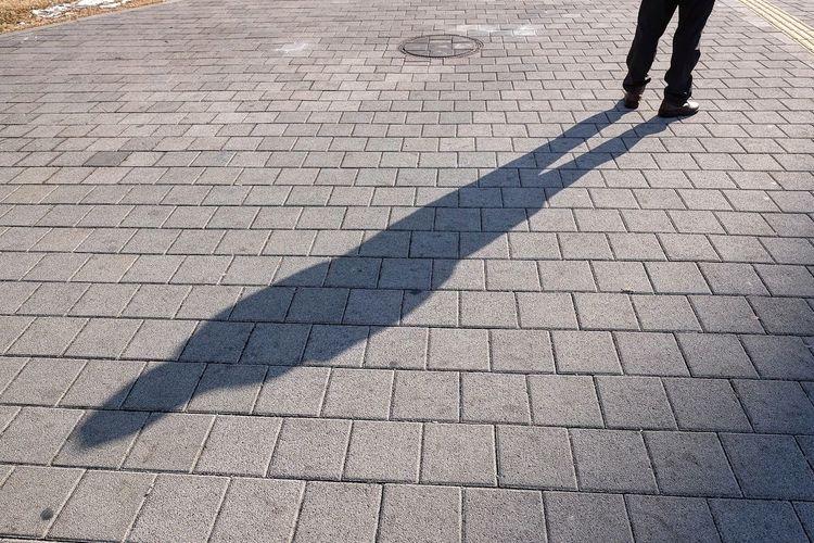 Shadow Sunlight