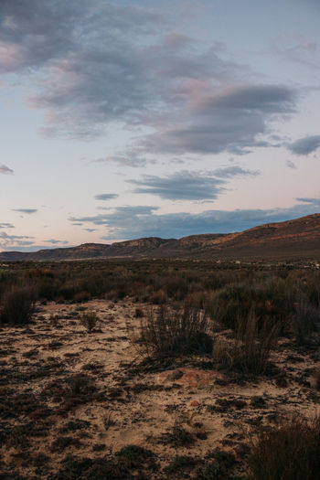 Blue Karoo. Cape Town Cederberg Desert South Africa Adventure Beauty In Nature Cloud - Sky Clouds Explore Grass Jonnynichayes Karoo Landscape Mountain Nature No People Outdoors Popular Photos Scenics Sky Sunset Sunset In Desert Tranquil Scene Tranquility Wallpaper