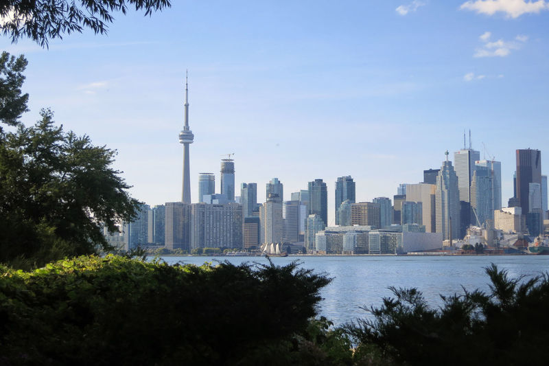 Cn tower amidst buildings in front of river and trees against sky on sunny day