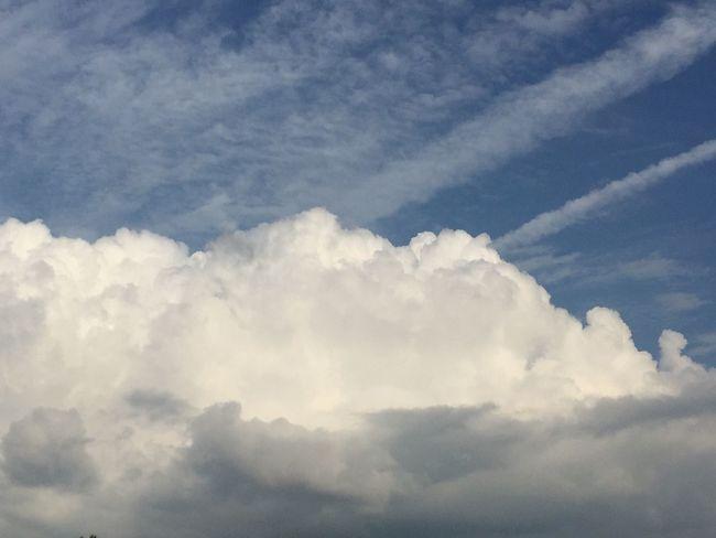 夏の空が見られました。 空 今日の空 My Sky 雲の形 青空 夏の雲 夏空