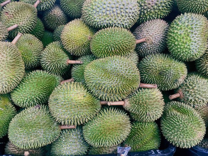 Fruits Durian Season Durians Growth Succulent Plant No People Backgrounds Plant Food And Drink Nature Spiked Thorn Food