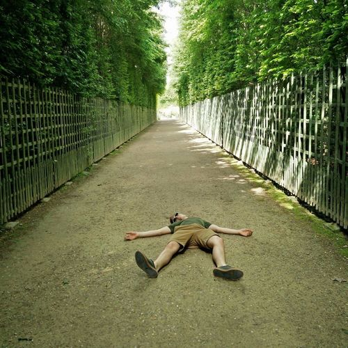 Full Length Of Man Lying On Footpath Amidst Trees At Park
