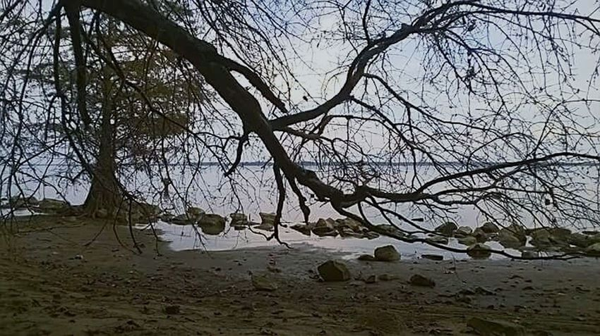 A Secret Place Away (No People Landscape Outdoors Water Tranquility Relaxation Tree Beauty In Nature Travel ) Breathing Space