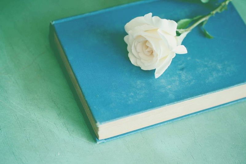 High Angle View Of Rose And Book On Green Table
