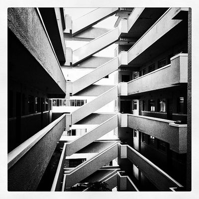 Staircase. #staircase #bwsquare #mono #artphoto_bw #monochrome #jj #capetown #southafrica #architecture #building #igerscapetown #iphoneographysa Building Staircase Monochrome Mono Jj  Iphoneographysa Southafrica Capetown Artphoto_bw Igerscapetown Bwsquare Architecture