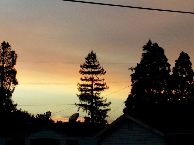 Sunset Silhouettes Norcal Vallejo My Cali