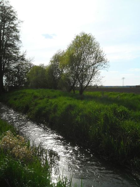 My Photography Springtime Sky Love To Take Photos ❤ Summer ☀ Nature Photography Nature Pretty♡ Water Marie Hasenglück