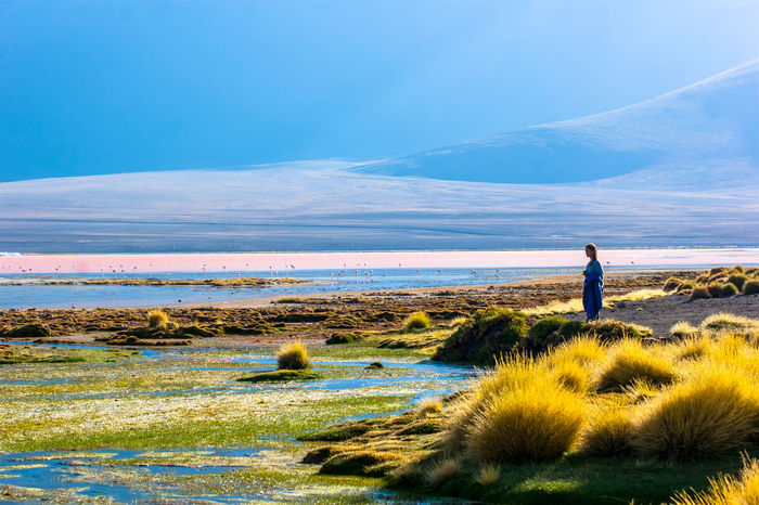 Beauty In Nature Bolivia Bolivia Uyuni On The Way Natural Light Portrait Getting Away From It All Saturdaysong_eyeemchallenge 43 Golden Moments Laguna Colorado Landscape Happy Adventure Club Nature Non-urban Scene out TakeoverContrast doors Scenics Sky Solitude Sublime Living The Essence Of Summer The Following People And Places Tranquil Scene Girl Power Miles Away Women Around The World Long Goodbye EyeEm Diversity Art Is Everywhere The Secret Spaces Live For The Story Place Of Heart Sommergefühle Neon Life Paint The Town Yellow Lost In The Landscape Go Higher Inner Power Summer Exploratorium