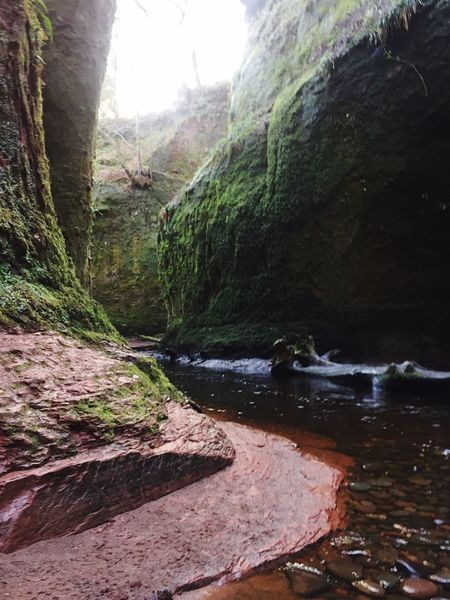 Physical Geography Outdoor Life Geology Rock Formation Gorge Glen Sandstone WoodLand Flowing Water Ravine Naturelovers VisitScotland Today In Scotland Beauty In Nature