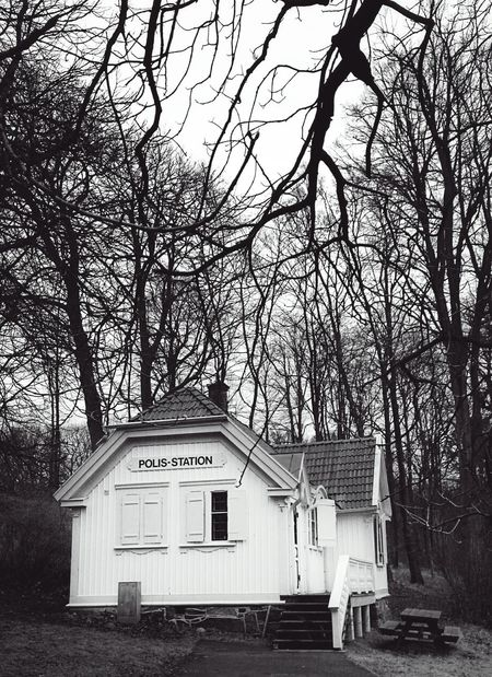 in case somebody gets murdered, even in the lonely woods, justice will be done Feeling Safe In The Forest in Göteborg, Sweden . Out And About Polis Station Police Station The Week On Eyem Bnw Blackandwhite Melancholic Landscapes Photographic Memory Adventureisoutthere Swedish Architecture