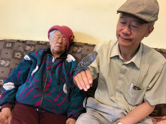 Senior man with budgerigar sitting by woman on sofa at home