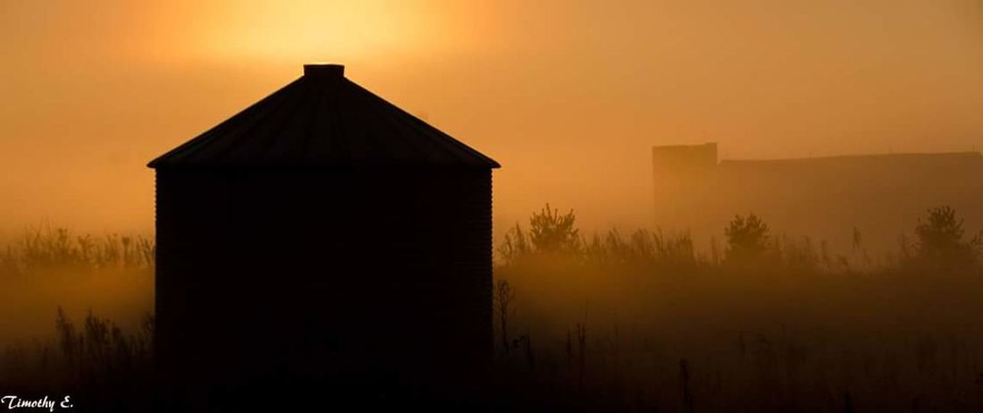 Foggy morning on the farm Silhouette Fog Landscape Outdoors Dawn Building Exterior Architecture Foggy Morning Golden Hour NikonLife Canada Coast To Coast London Ontario Canada Ontario, Canada Sunrise Nikon D7000 On The Farm Sillouette