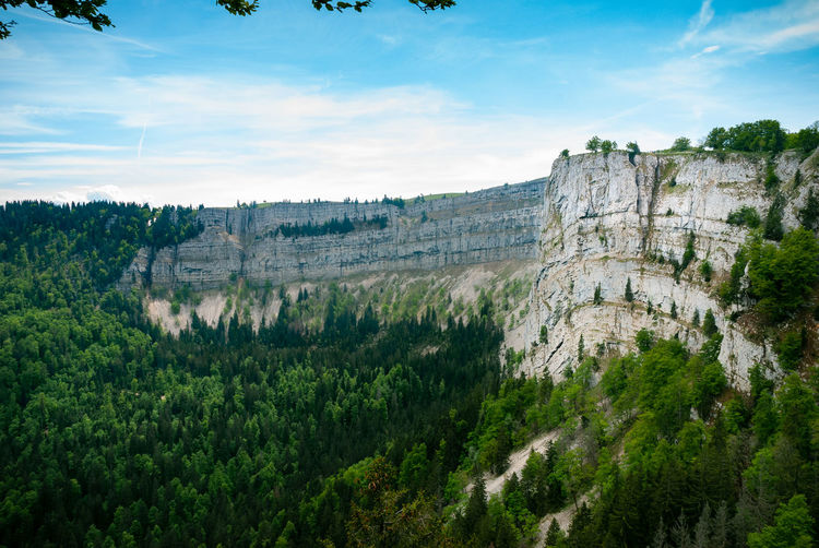 view into the cliff Landscape_Collection Nature Photography Rock View Beauty In Nature Cliff Cloud - Sky Creux Du Van Day Environment Land Landscape Mountain Nature Nature_collection No People Non-urban Scene Outdoors Scenics - Nature Sky Switzerland Tranquil Scene Travel Travel Destinations Tree The Great Outdoors - 2018 EyeEm Awards