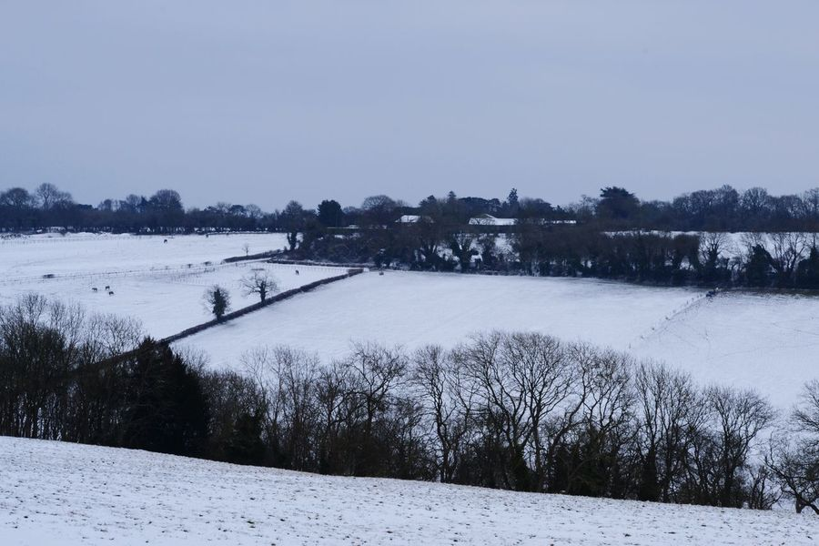 Farmland Wintertime Snow Covered Coldsnap No People Winterscapes Wintry Scene Tree Snow Cold Temperature Winter Water Frozen Snowing