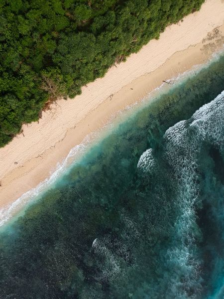 Nyang Nyang Beach, Bali Bali Beaches Indonesia Drone Photography Bali Drone Photography Bali Aerial Photography Power In Nature Summer Vacation Summer Beach Life Worlds Best Beaches Travel Destinations Exploring Adventure Nyangnyangbeach Nyang Nyang Beach, Bali. Paradise Sand Water Nature Beauty In Nature Beach Landscape Tranquility Tranquil Scene Scenics Day Outdoors No People Sea Tree EyeEm Ready   EyeEmNewHere