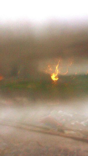 Firestorm Firestorm Fire False Fire True Or False