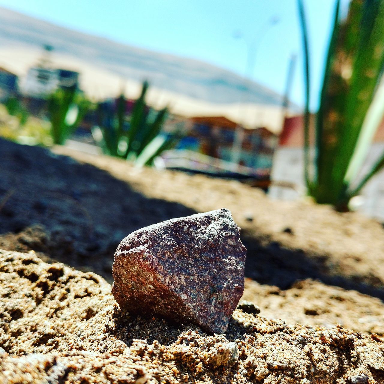 rock - object, focus on foreground, day, no people, outdoors, close-up, nature, beach, sand, sky