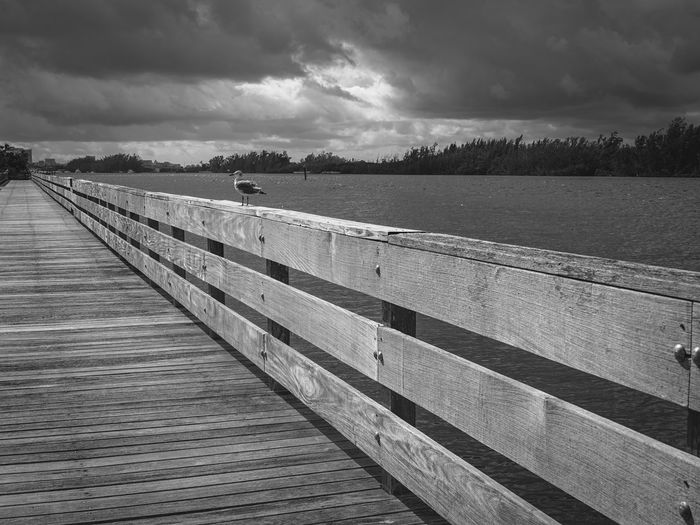 The Last Seagull Water Sky Nature Cloud - Sky Tranquil Scene Wood - Material No People Outdoors Day Landscape Beauty In Nature Monochrome Bird Seagull Boardwalk Florida Fine Art Photography Fujifilm_xseries
