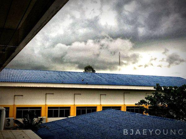my school in thailand. Bird Perching Roof Sky Architecture Cloud - Sky Bird Of Prey