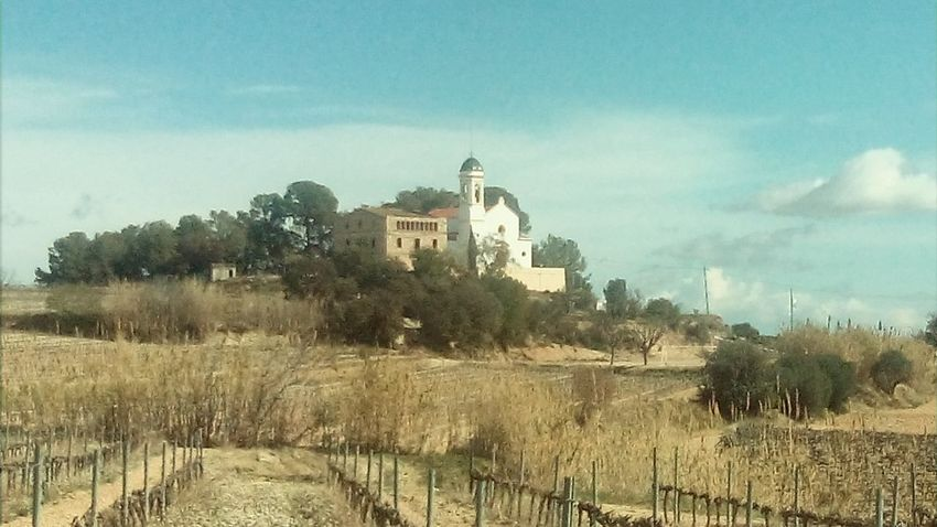 Buildings Church Vineyards  Mobile Photography