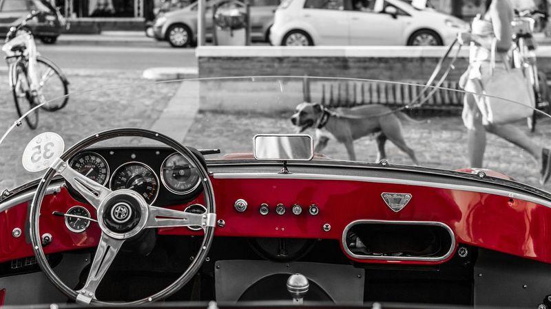 Alfaromeo Alfa Car Alfaromeo Vintage Cars Vintage Photo Coloursplash Colour Splash Red Nikonphotography NikonD3100 Nikontop Check This Out Love Streetphotography Streetphoto_bw Streetphoto_color Street Photography Streetphotography_bw Street Photo Dog Walking