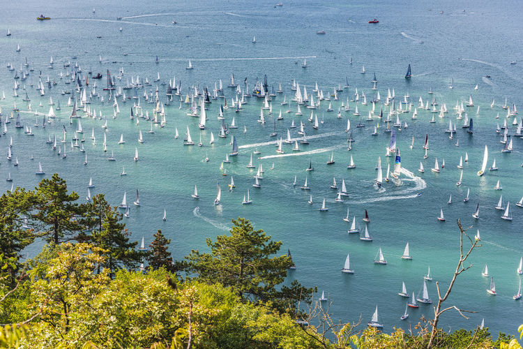 High angle view of sailboat in sea