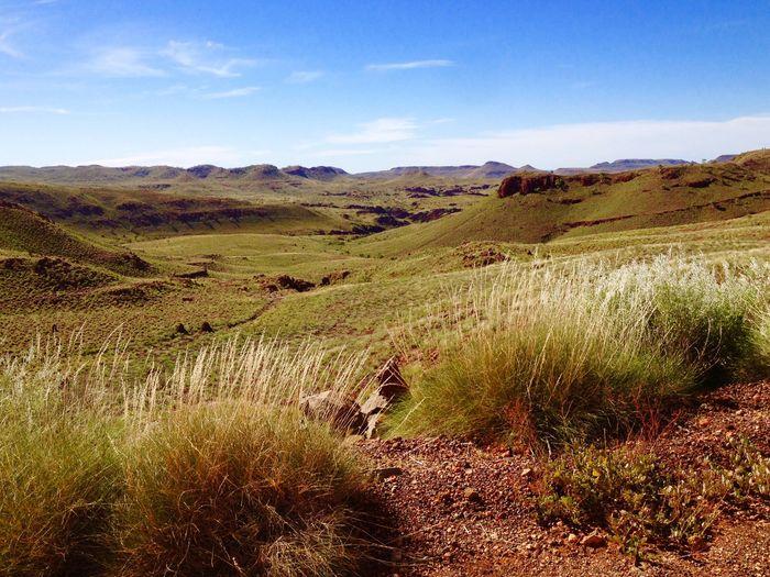 Millstream National Park Scenics Scenic Scenic View Scenic Lookout Scenic Landscapes Grass View View From Above Showcase April Reedited Pilbara WesternAustralia Western Australia Outback Outback Australia Mountains Mesa Landscape Landscape_Collection Landscape_photography Landscapes Landscape #Nature #photography Landscape_photography