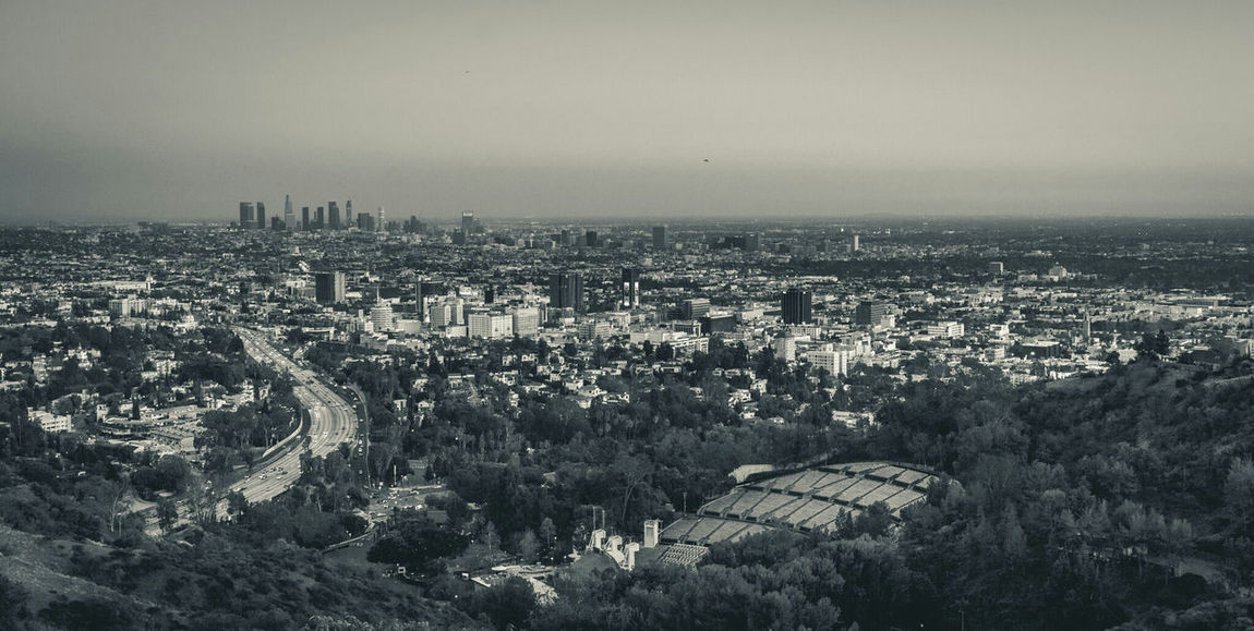Los Angeles, California Hollywood California Landscape Landscape_Collection Landscape_photography Landscapes Sony Sony A6000 Sony Alpha Hollywood Bowl Hollywood Bowl Scenic Overlook Team Sony Showcase March Adapted To The City Lost In The Landscape