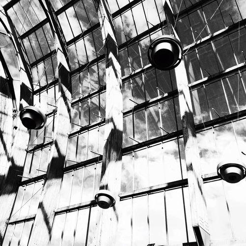 Sheffield Winter Garden Winter Garden Architecture Architecturelovers