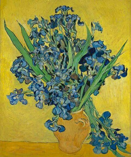 Van Gogh 🌹 Yellow Studio Shot Healthcare And Medicine Flower Herbal Medicine Close-up Plant