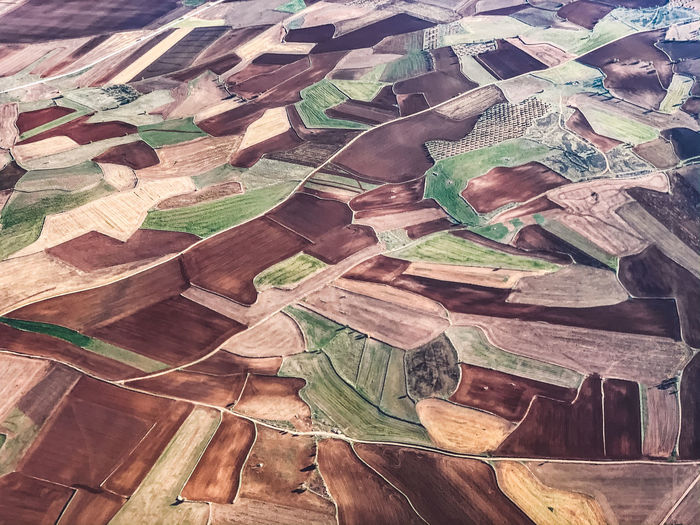 High angle view of agricultural land