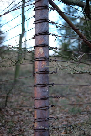 Barbed Wire Fence Metal Protection Safety Security