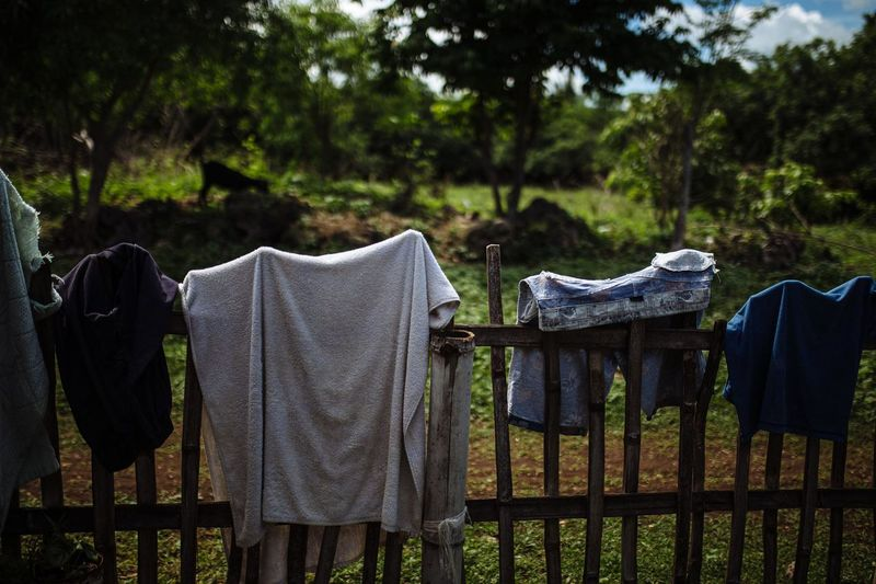Clothes drying on field against trees