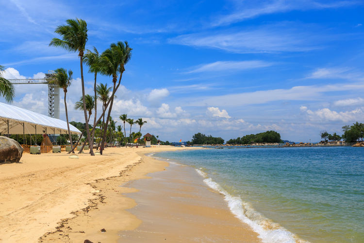 The Beach of Sentosa Island in Singapore town, Singapore. Sentosa, Sentosa Island, Singapore, Asia, Beach, Blue, Calm, Coast, Coconut, Day, Green, Holiday, Island, Lagoon, Landscape, Paradise, Resort, Sand, Sandy, Scenery, Sea, Sky, Summer, Sunny, Travel, Tree, Tropical, Vacation, View, Water Beach Beauty In Nature Cloud - Sky Day Nature No People Outdoors Palm Tree Sand Scenics Sea Sky Summer Tranquil Scene Tree Water