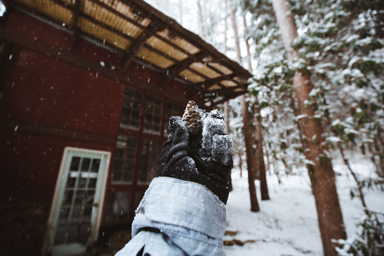 Cropped hand holding pine cone against house during winter