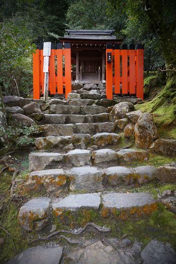 2016 Japan Kamigamo Shrine Kyoto Place Of Worship Religion Shrine Stairs 上社 上賀茂神社 京都 神社 賀茂別雷神社