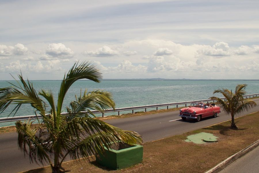 Cuba Pink Road Varadero Beauty In Nature Car Horizon Over Water Land Vehicle Landscape Nature No People Old Car Palm Tree Pink Car Scenics Sea Transportation Tree Vintage Cars Water