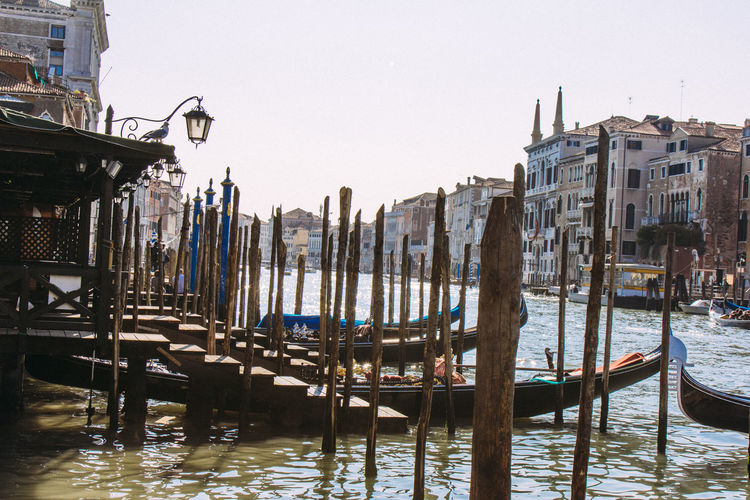Gondolas moored by wooden posts in grand canal