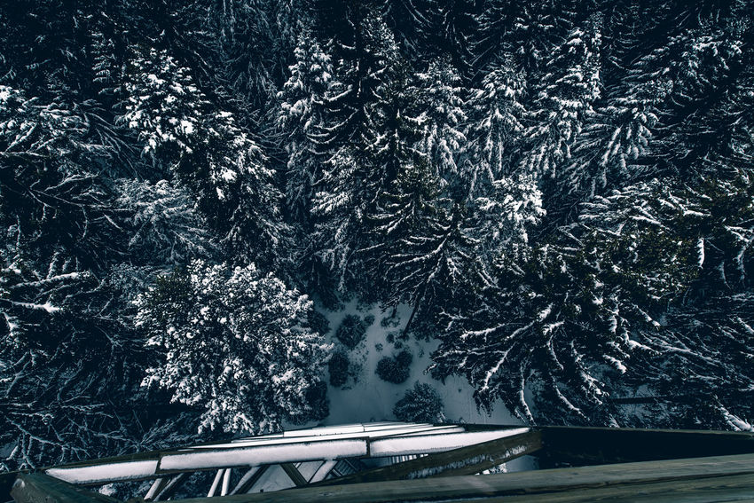 Aerial View Birdsview Cold Temperature Day High Angle View Nature No People Outdoors Snow Transportation Tree Water Winter