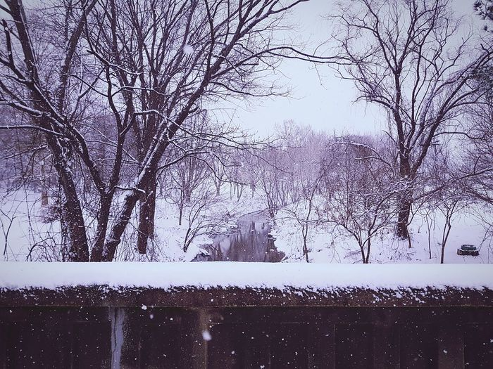 Snow Covered Bridge Snow Covered Bridge Bridge Snow Tree Winter Nature Cold Temperature Beauty In Nature Day Water