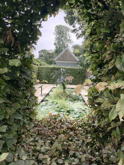 Sculpture Burghley House Stamford Trees Pond Leaves Tree Growth Plant Leaf Nature Flower Day Garden Scenics Outdoors Freshness Footpath Foliage Formal Garden Beauty In Nature Park - Man Made Space