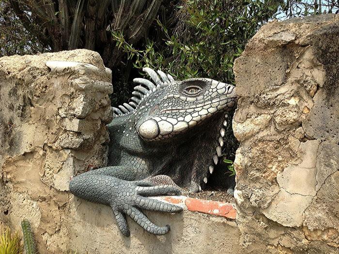 A giant iguana sculpture greets visitors of Curaçao artist Nena Sanchez Alligator Animal Scale Animal Themes Day Iguana Leguan Sculpture Nature Nena Sanchez No People One Animal Outdoors Reptile Work Of Art