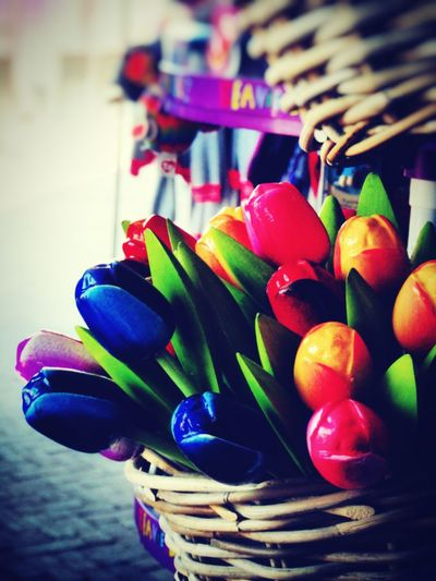 Fresh Tulips with a Scent of Plastic