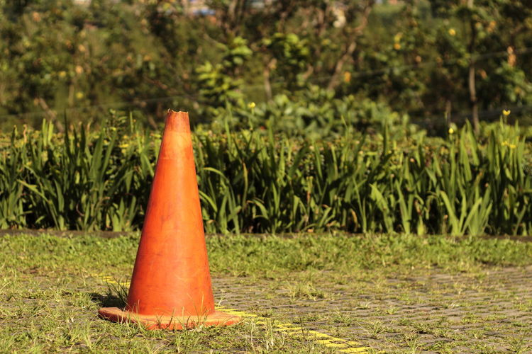 road cone on a parking area Parking Lot Pylon Road Beauty In Nature Close-up Day Focus On Foreground Grass Green Color Markers  Nature No People Orange Color Outdoors Plant Road Cone Safety Traffic Cone Tranquility